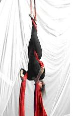 Aerial Silks Instructional Manuals Crucifix Position
