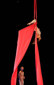 Circus Aerials Photo by Dave Clendenan